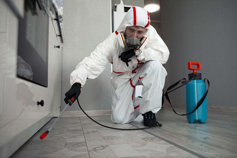 Termite pest control worker in a protective suit while working